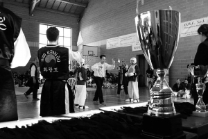 Sparring Competition The 2016 WORLD HWA RANG DO ASSOCIATION Annualhellip