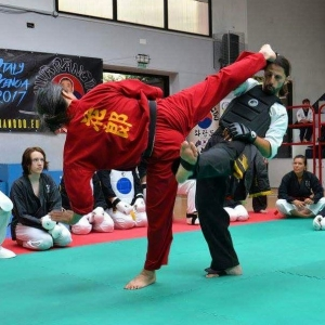 Grandmaster Taejoon Lee instructing a seminar on sparring techniques athellip